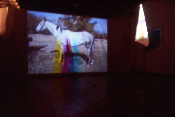 Screen shot of Judith Norris's Holy Dog (remote performance)