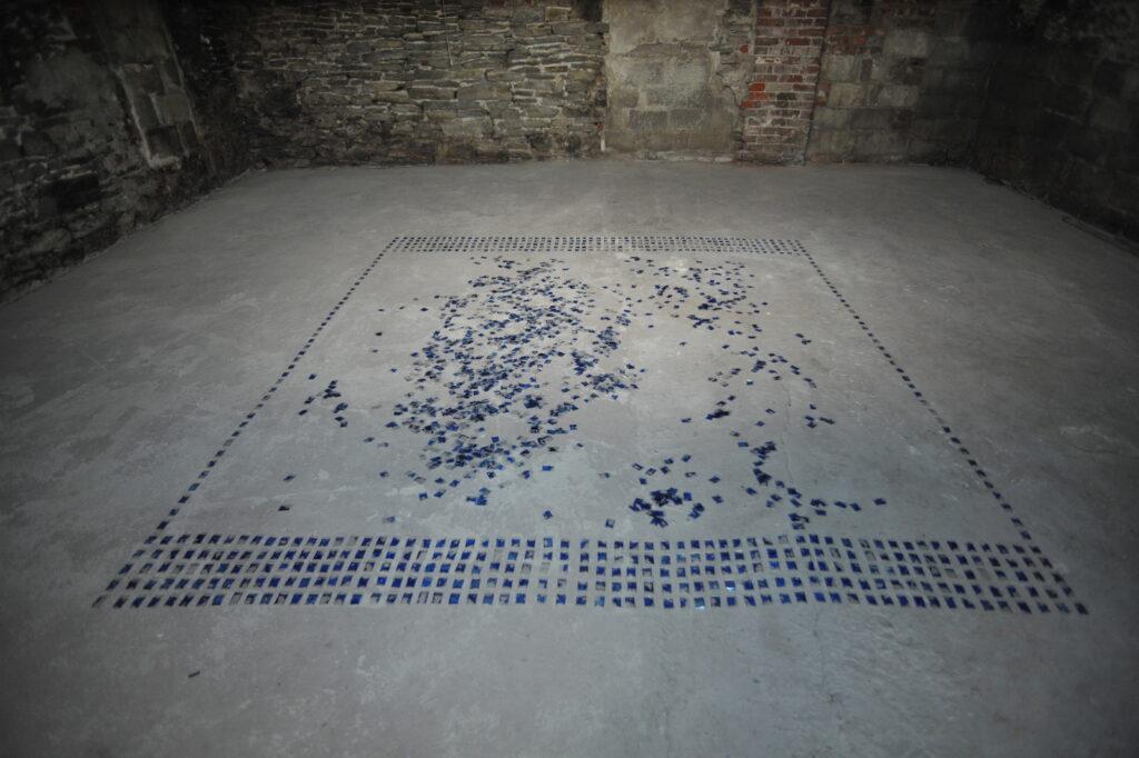 Martine Viale's In Vivo/Toronto installation at XPACE Cultural Centre